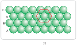 Hexagonal-closed packing in two dimensions