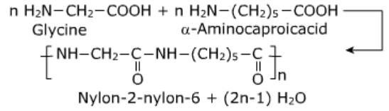 Nylon-2-Nylon-6