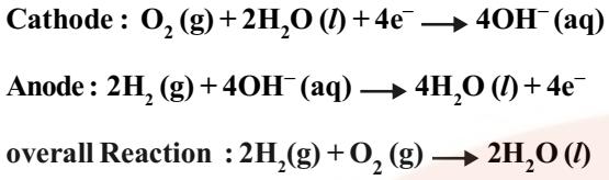 Fuel Cells reaction