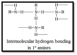 Physical Properties of Amines