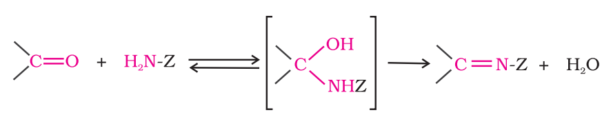 Addition of ammonia and its derivatives