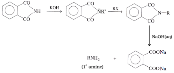 Preparation of Amines Gabriel phthalimide synthesis