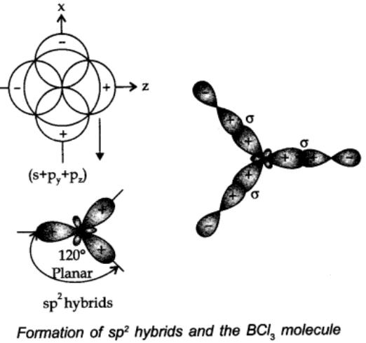 sp2 hybridisation: